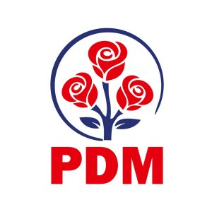PDM1.jpg