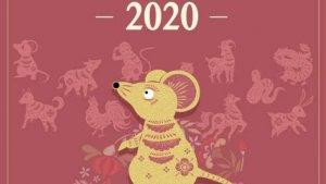 an chinezesc 2020_fc669f9a22.jpg